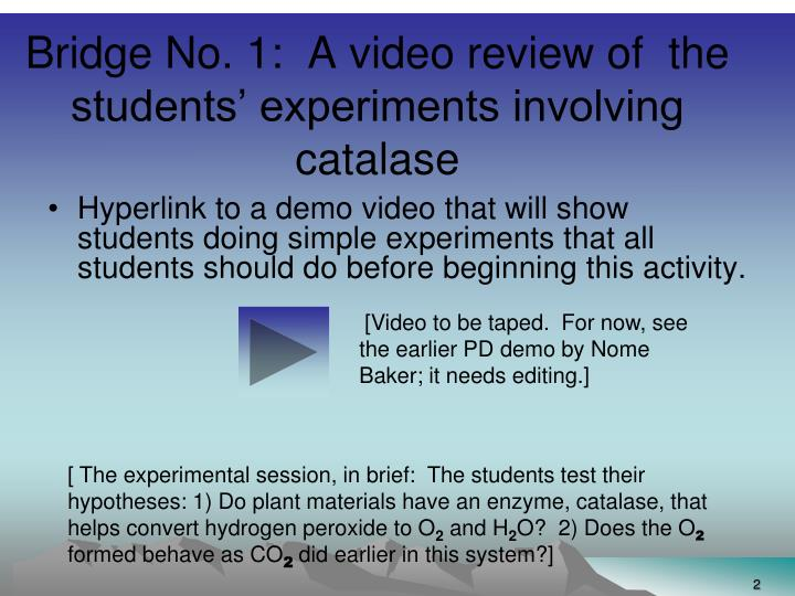 Bridge no 1 a video review of the students experiments involving catalase