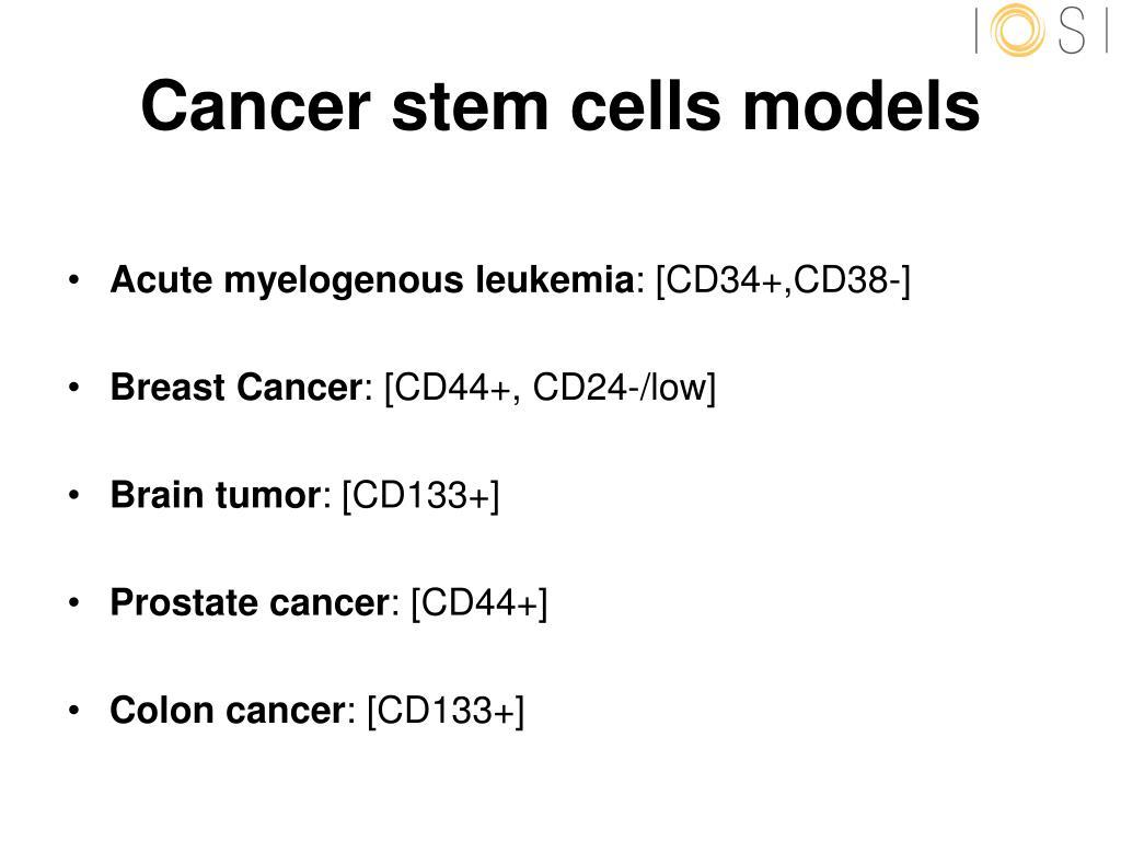 Cancer stem cells models