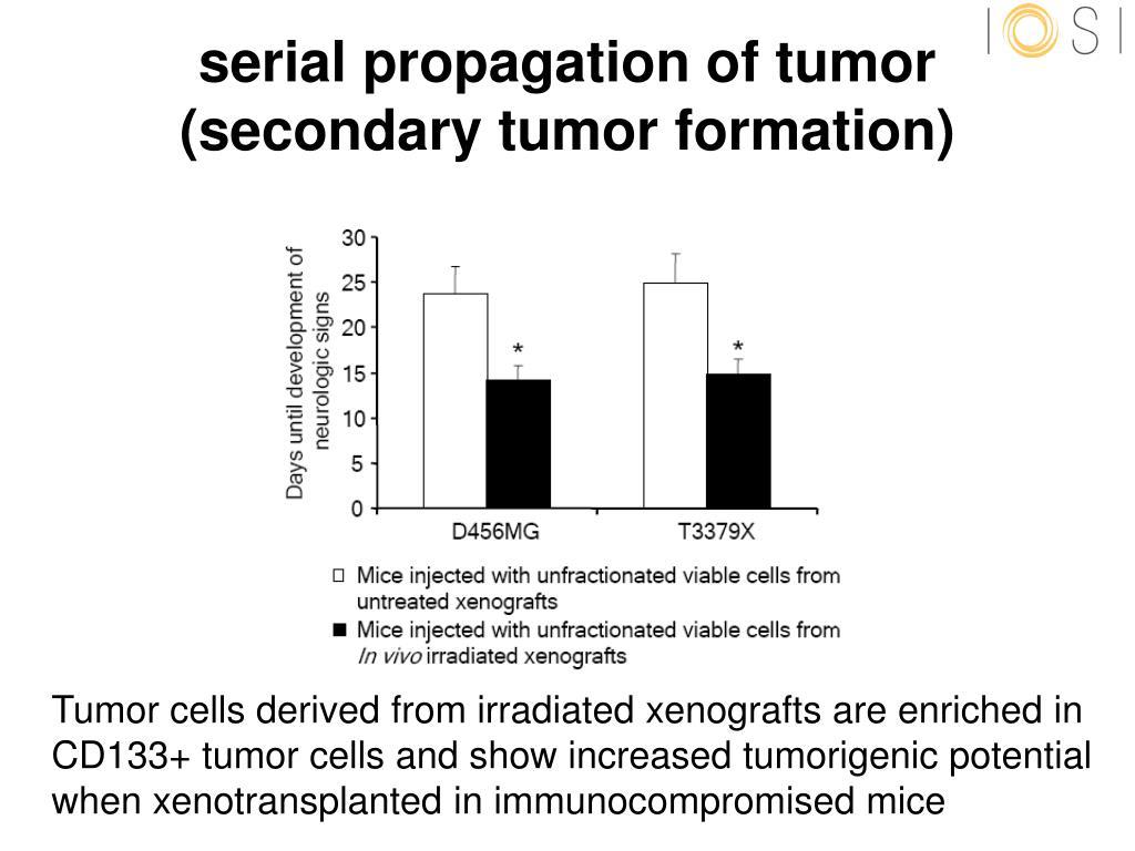 serial propagation of tumor
