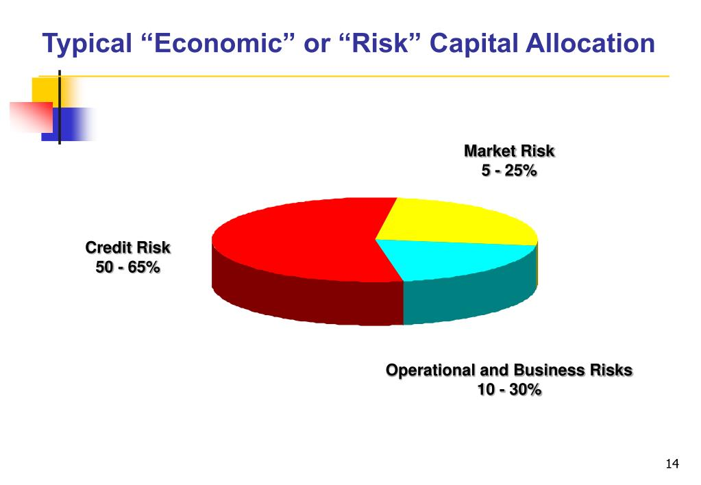 """Typical """"Economic"""" or """"Risk"""" Capital Allocation"""