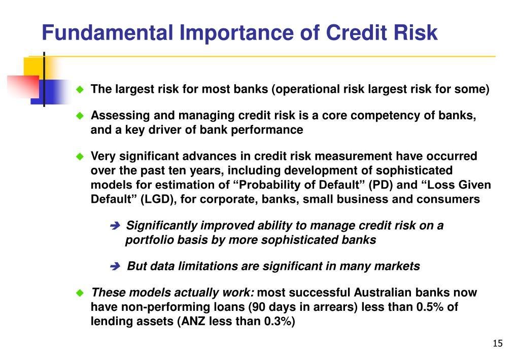 Fundamental Importance of Credit Risk