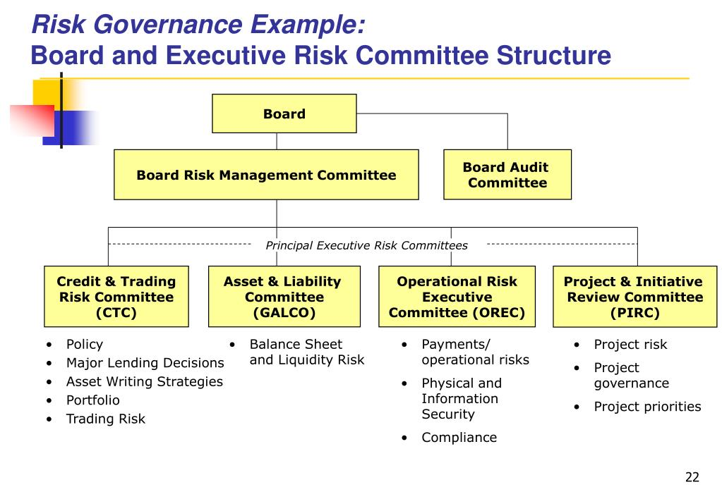 Risk Governance Example: