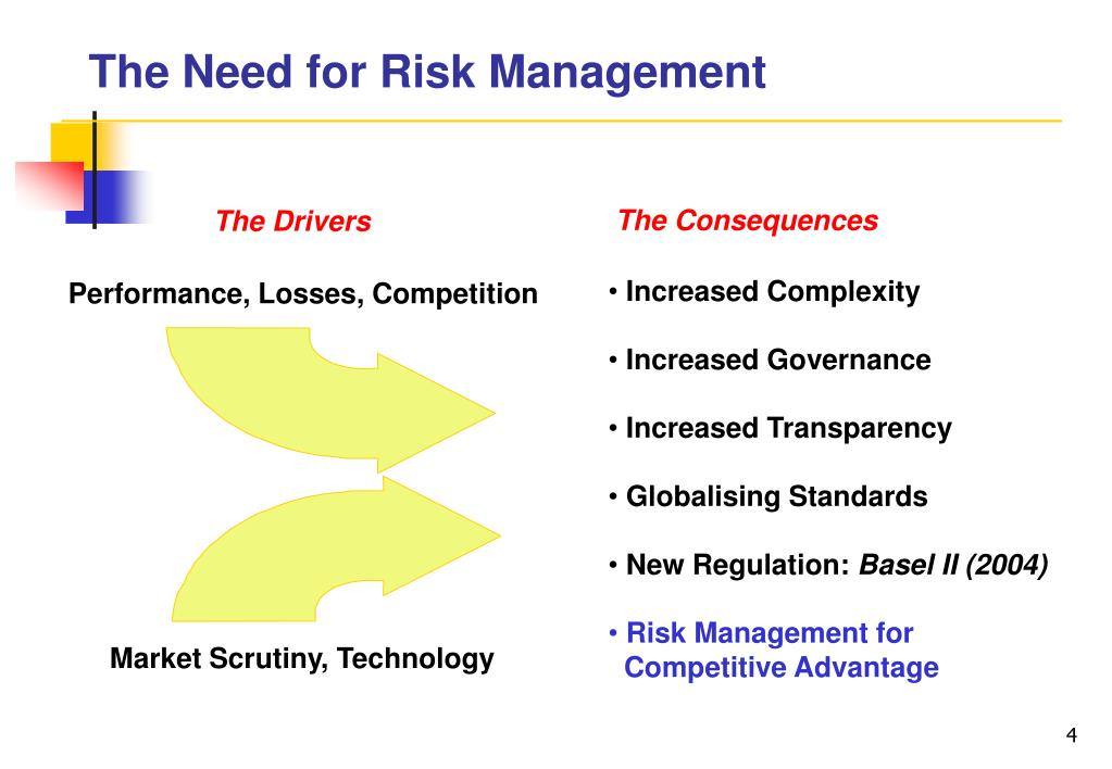 The Need for Risk Management