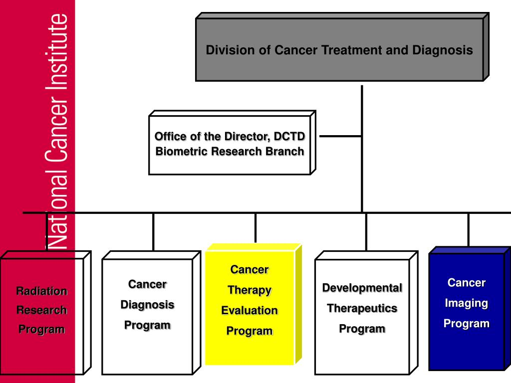 Division of Cancer Treatment and Diagnosis