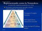 representando como la naturaleza revisited life s complexity pyramid barab si 2002