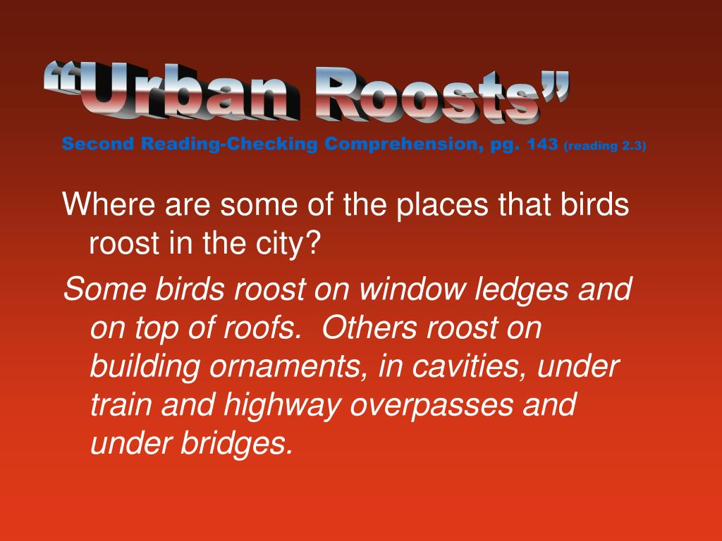 """Urban Roosts"""