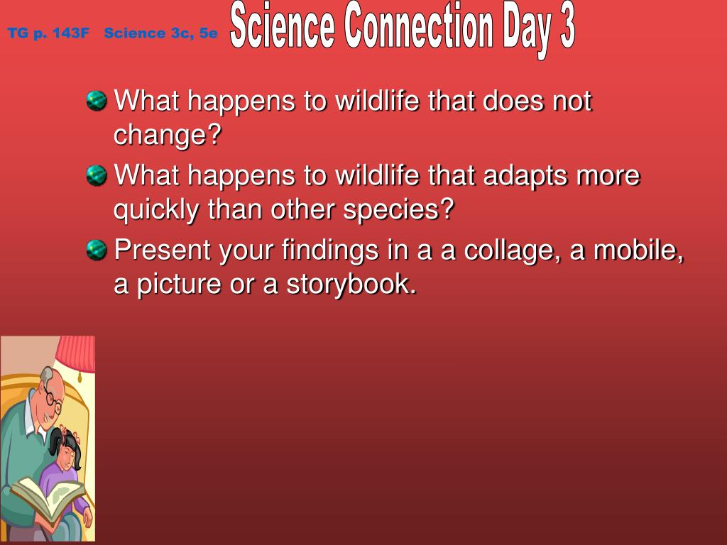 Science Connection Day 3