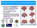 you can put your trust in ganoe ganoderma