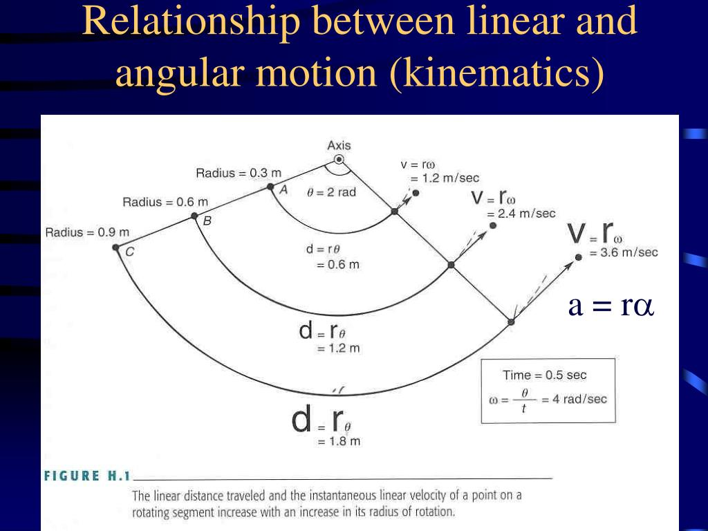 Relationship between linear and angular motion (kinematics)