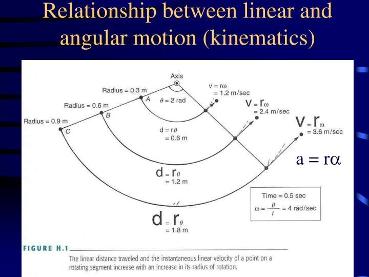 Relationship between linear and angular motion kinematics