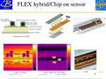 flex hybrid chip on sensor