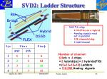 svd2 ladder structure