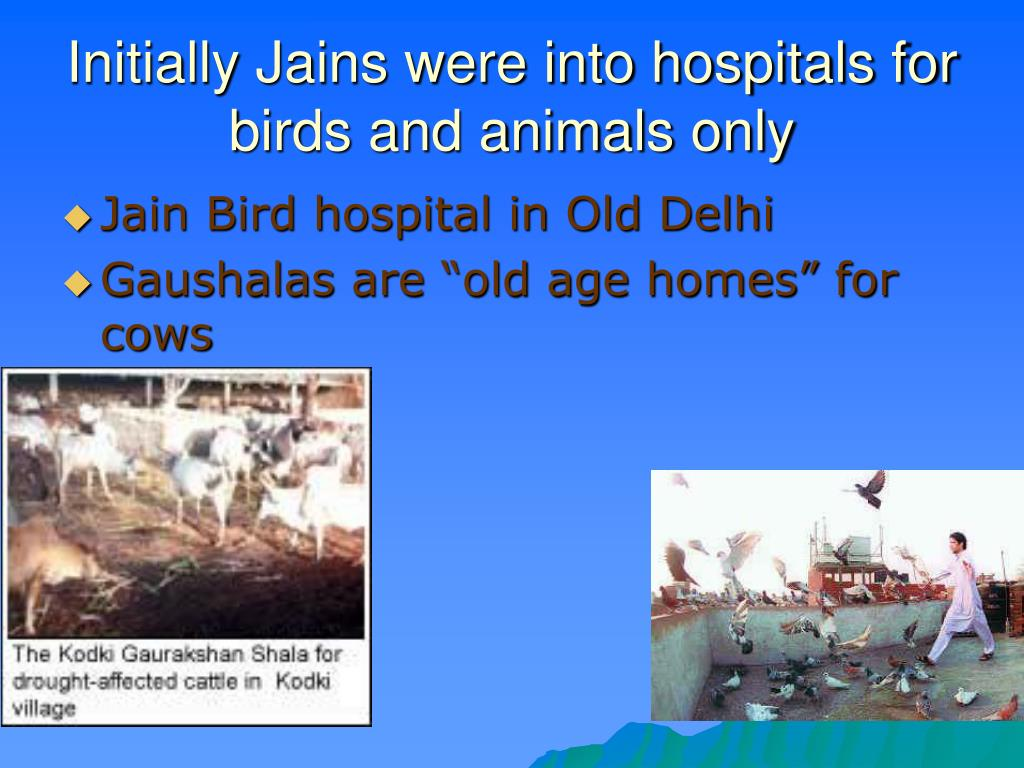 Initially Jains were into hospitals for birds and animals only