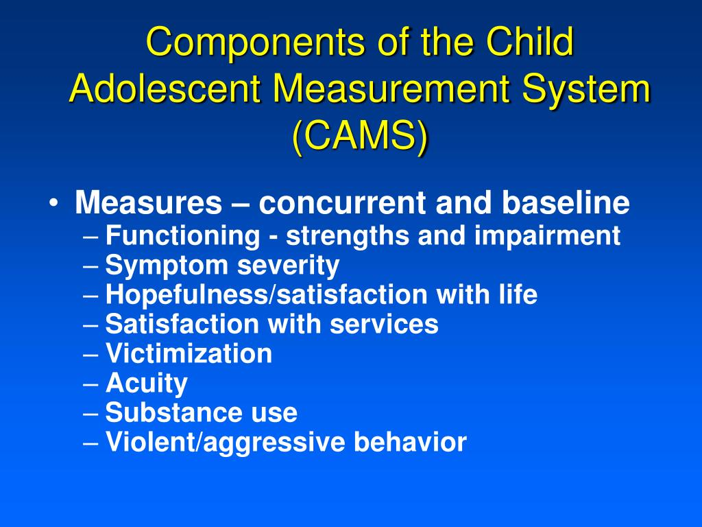 Components of the Child Adolescent Measurement System (CAMS)