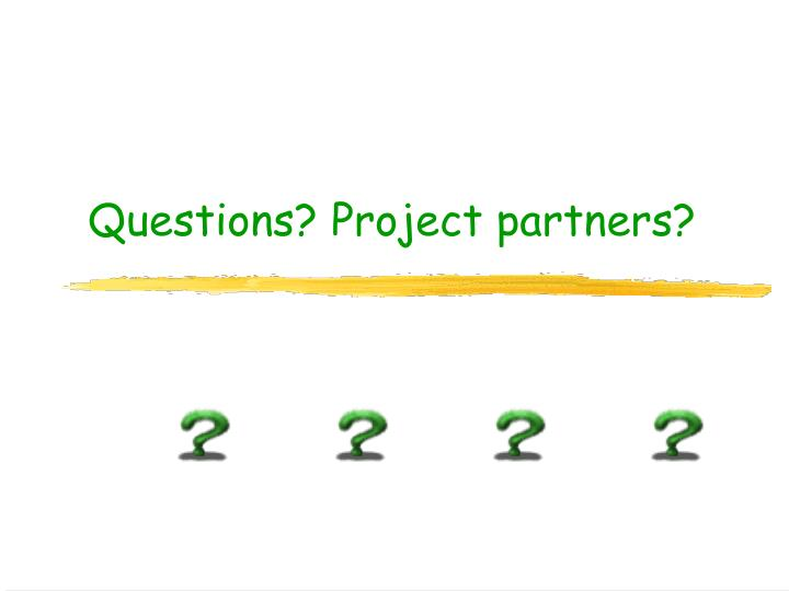 Questions project partners