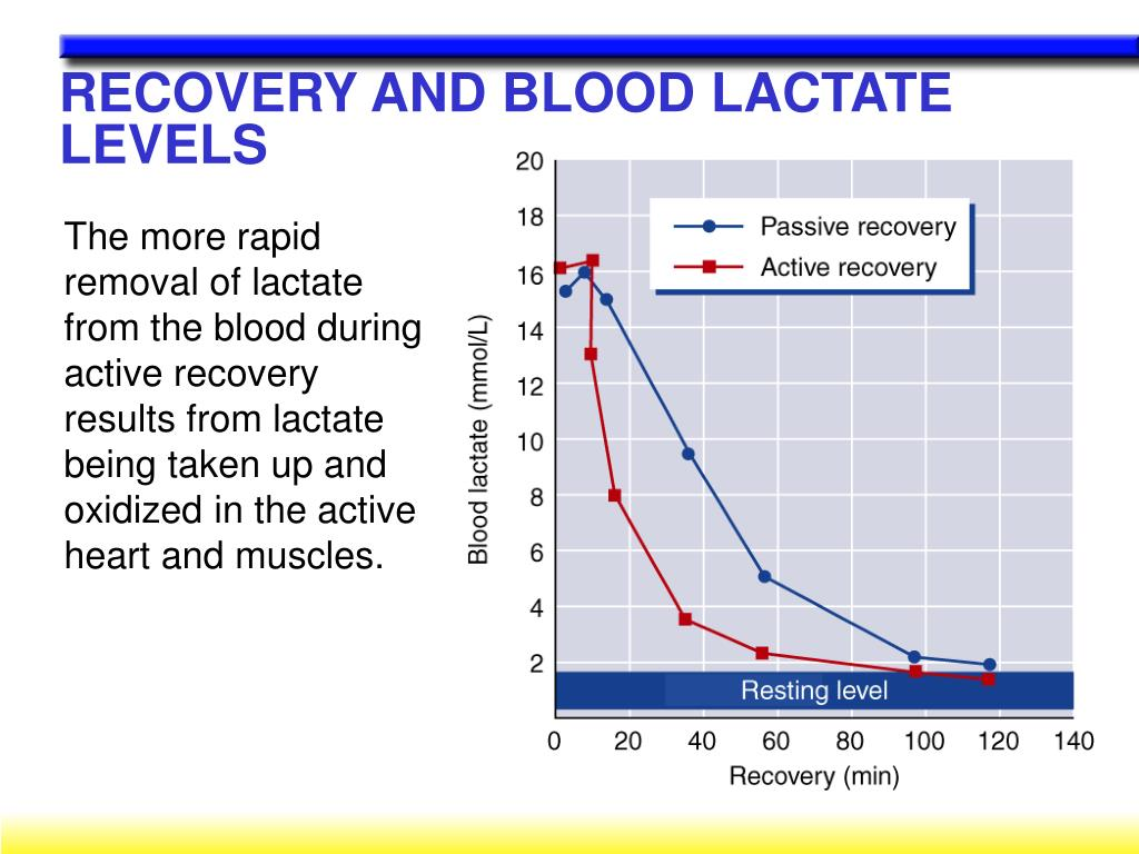 RECOVERY AND BLOOD LACTATE LEVELS