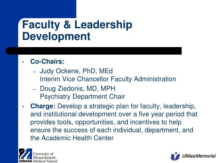 faculty leadership development n.