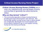 critical access nursing home project