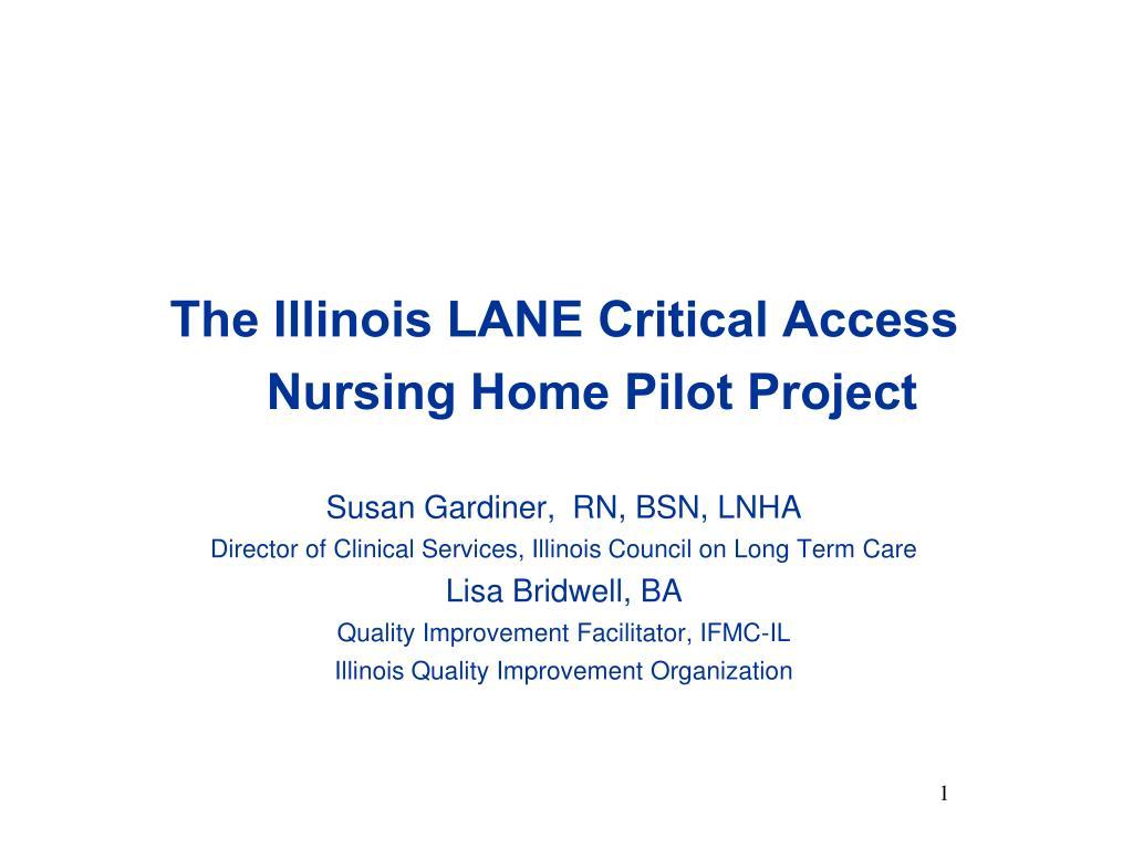 the illinois lane critical access nursing home pilot project