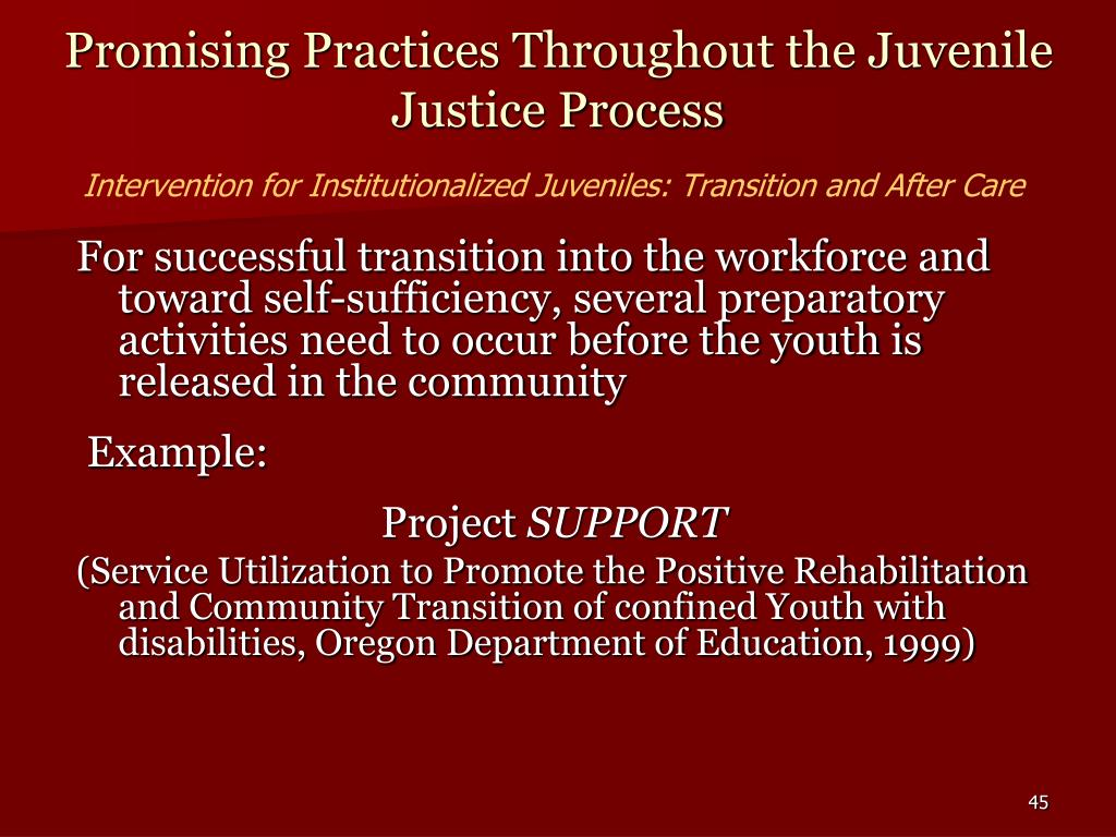 Promising Practices Throughout the Juvenile Justice Process