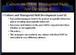 culture and how managerial skills are developed15