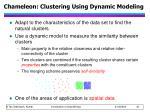 chameleon clustering using dynamic modeling