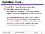 chameleon steps17