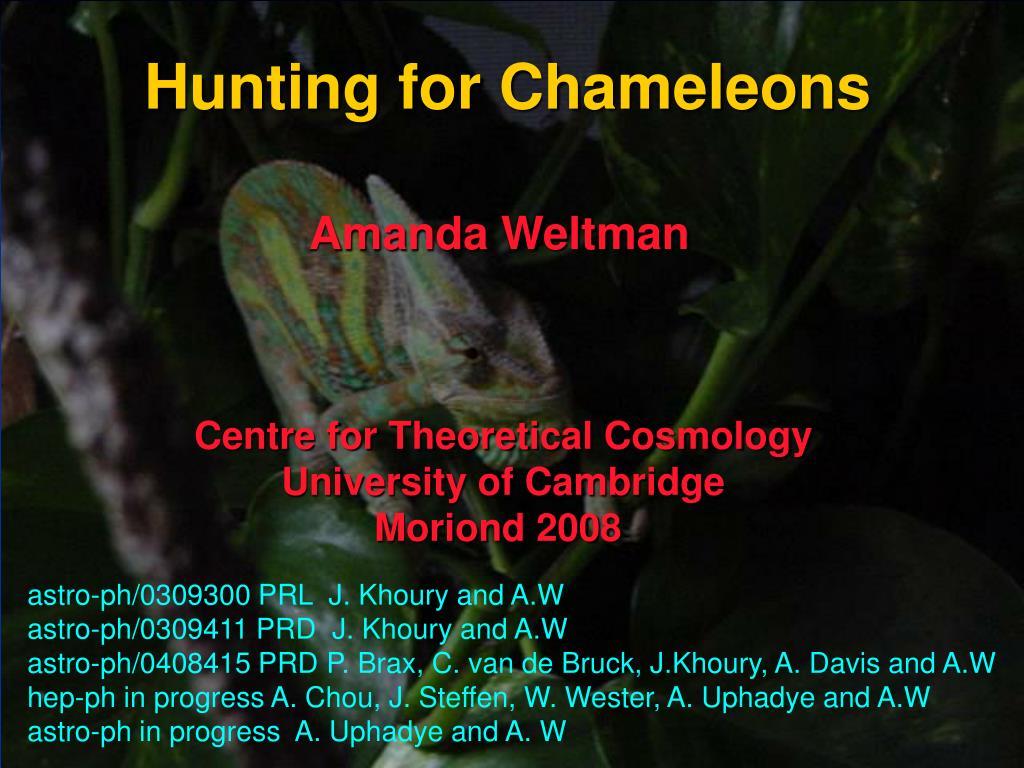 hunting for chameleons l.