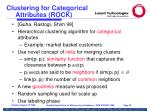 clustering for categorical attributes rock