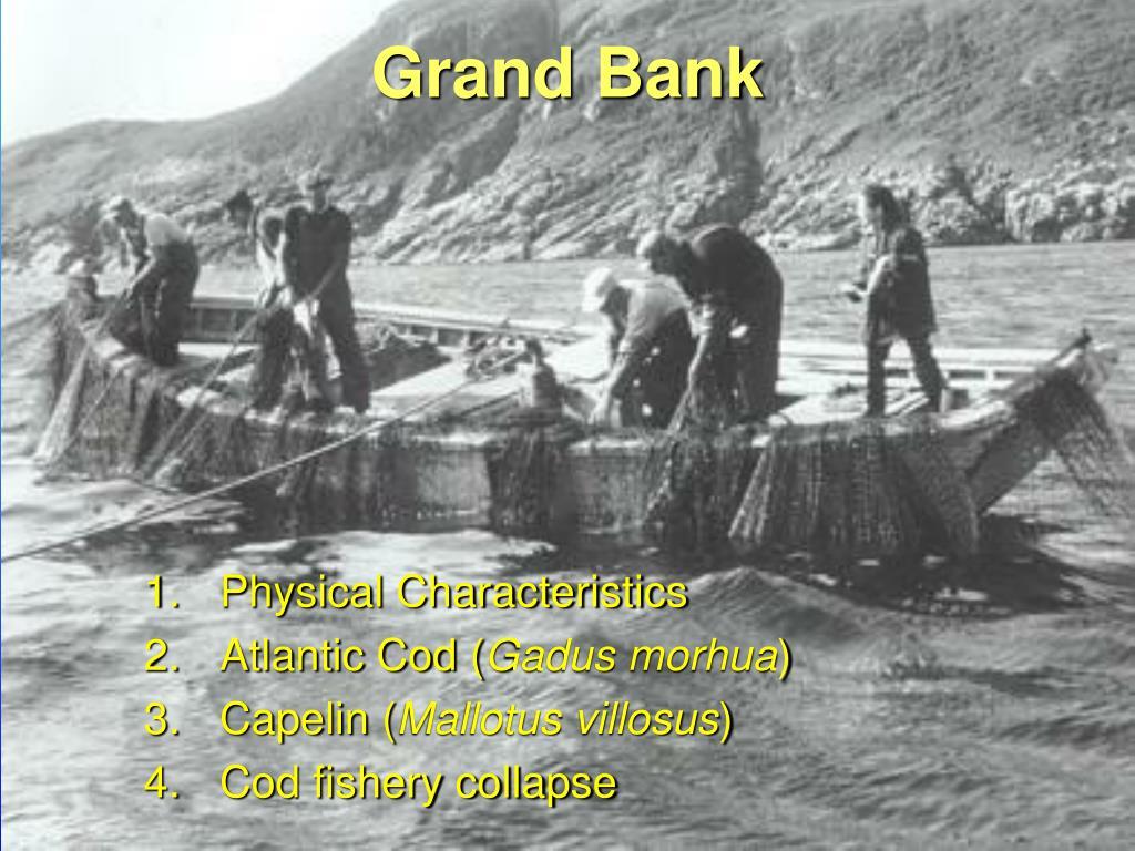 grand bank l.