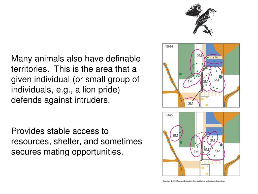 Many animals also have definable territories.  This is the area that a given individual (or small group of individuals, e.g., a lion pride) defends against intruders.