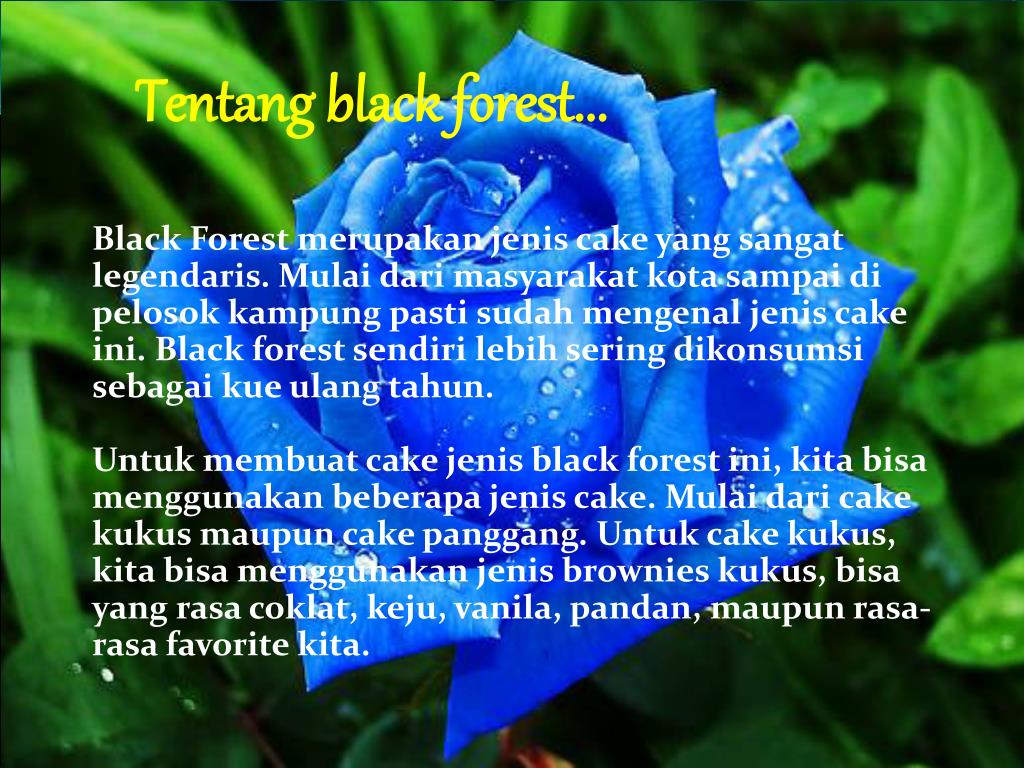 Tentang black forest...