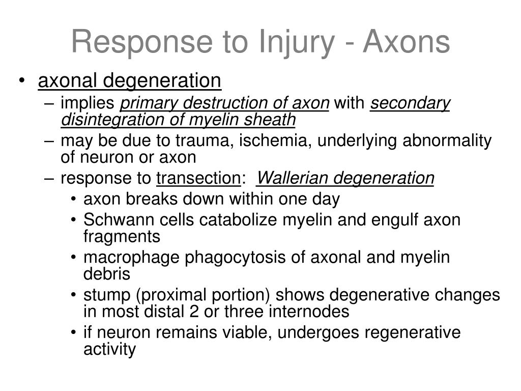 Response to Injury - Axons