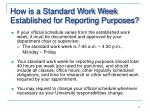 how is a standard work week established for reporting purposes