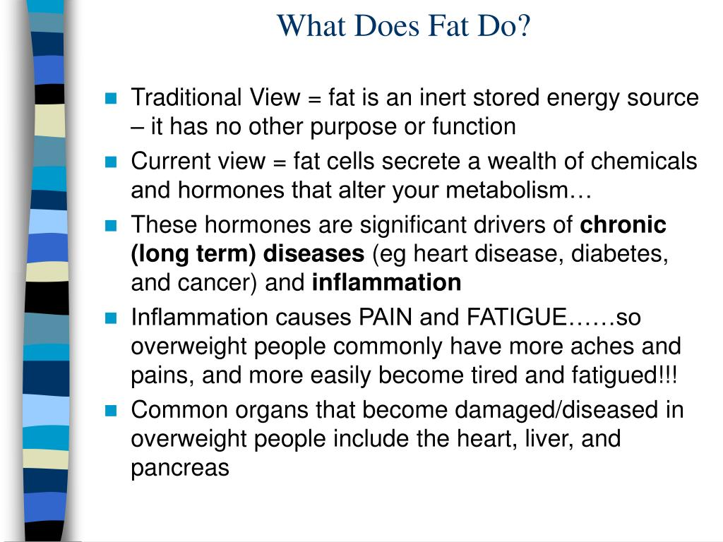 What Does Fat Do?
