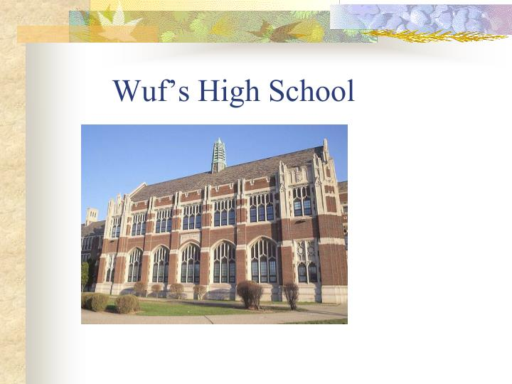 Wuf s high school