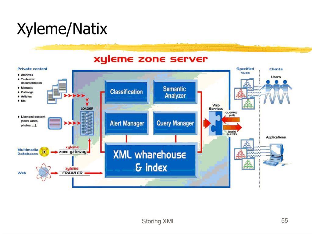 Xyleme/Natix