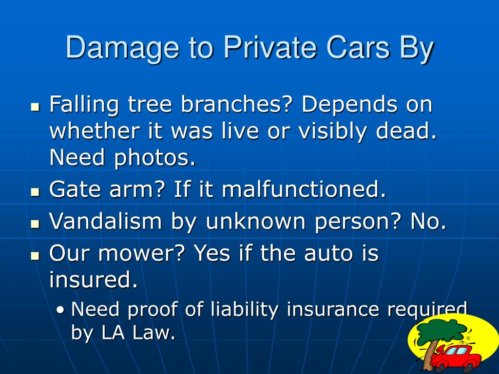 Damage to Private Cars By