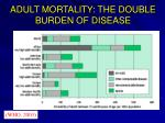 adult mortality the double burden of disease