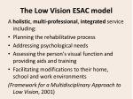 the low vision esac model