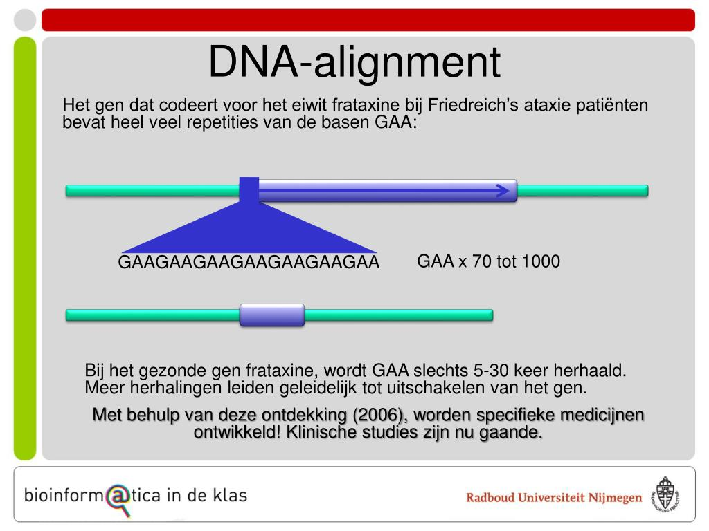 DNA-alignment