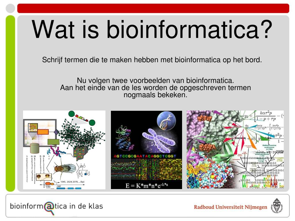 Wat is bioinformatica?