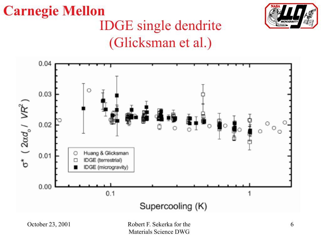 IDGE single dendrite