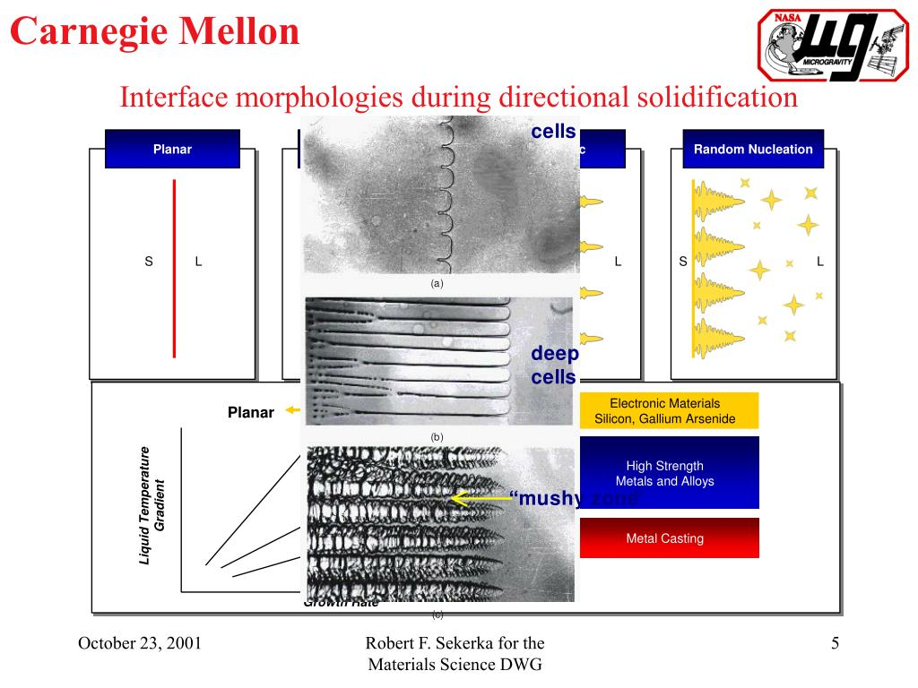 Interface morphologies during directional solidification