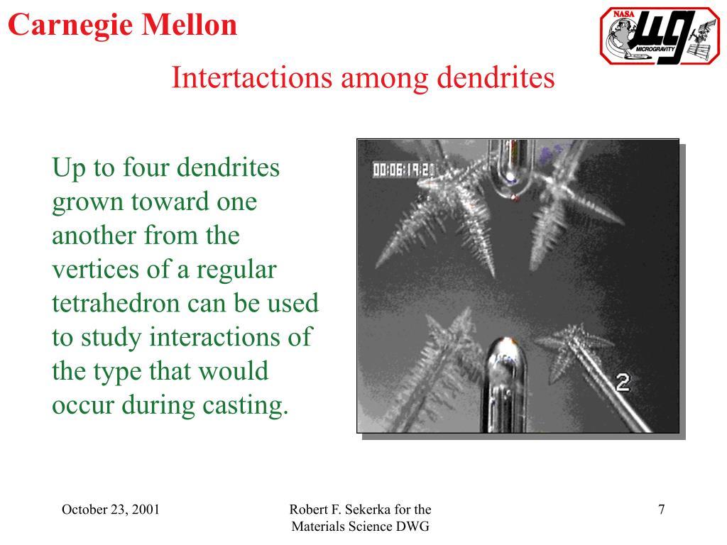 Intertactions among dendrites