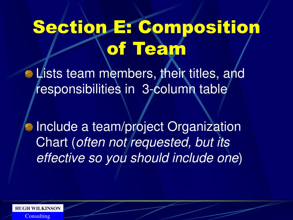 Section E: Composition of Team
