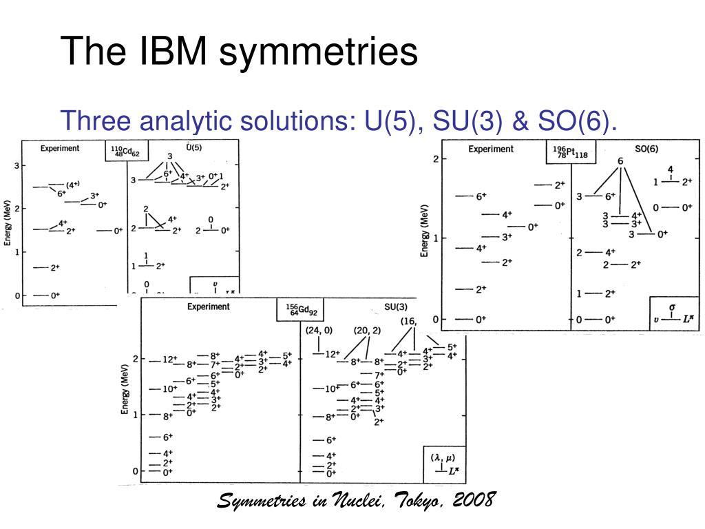 The IBM symmetries