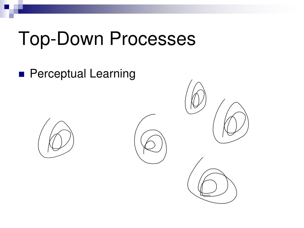 Top-Down Processes