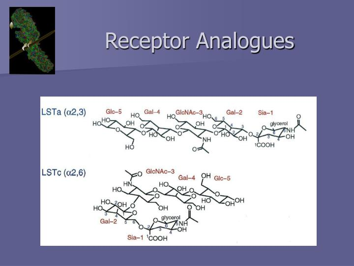 Receptor Analogues