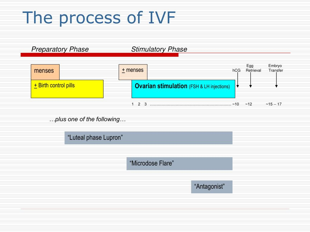 The process of IVF
